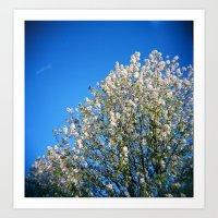 Blooming Tree on Azure Sky Art Print