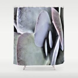 Succulent Leaves Details Shower Curtain