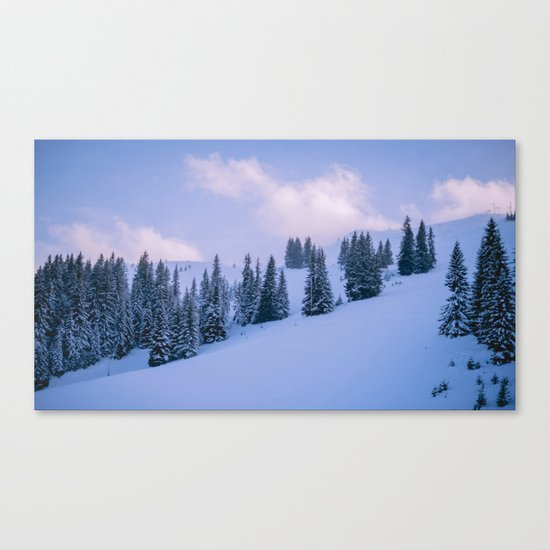 The Winter Woods Canvas Print