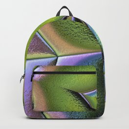 Frosted Glass Panel Backpack