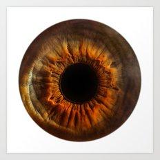 EYE Love to See You, Brown Eyes Art Print