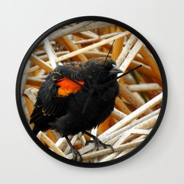 Juvenile Male Redwing Blackbird Wall Clock