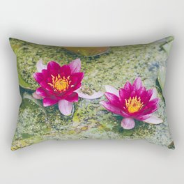 Flower. Red Water-lily (Nymphaea 'James Brydon'). Norfolk, UK. Rectangular Pillow