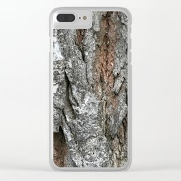 bark at lakeside park Clear iPhone Case