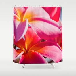 Pua Melia ke Aloha Keanae Dreams Shower Curtain