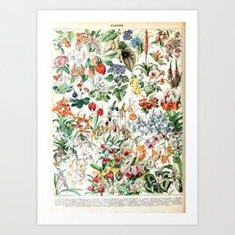 Adolphe Millot - Fleurs D - French vintage poster Art Print