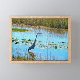 Blue Heron in the Glades Framed Mini Art Print