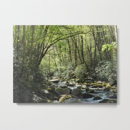 Deep in the Forrest Metal Print