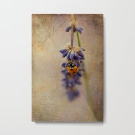 English Lavender Metal Print