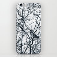 pigeon iPhone & iPod Skins featuring pigeon by Lama BOO
