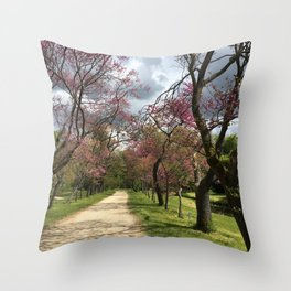 A Path of Romance, France Throw Pillow