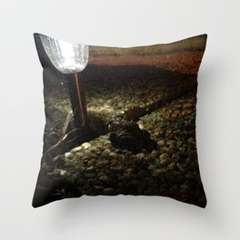Lamp Post Sentry Throw Pillow