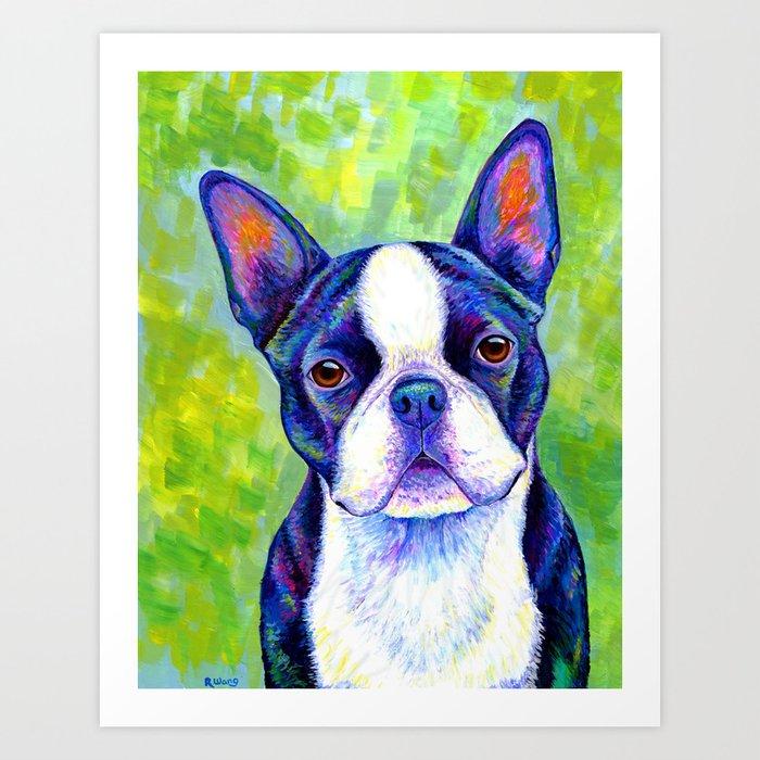 Colorful Boston Terrier Dog Art Print