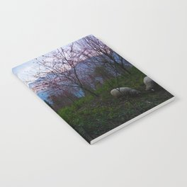 Sheep and Sunsets Notebook