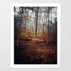 explore color Art Print