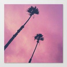 Pink Haze | Palms Canvas Print