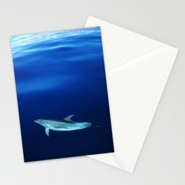 Dolphin and blues Stationery Cards