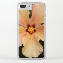 Hibiscus Sherbet Clear iPhone Case