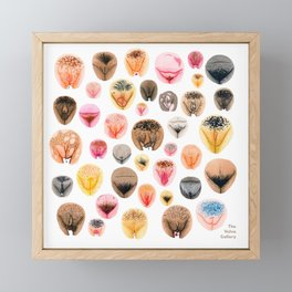 Vulva Variety Framed Mini Art Print