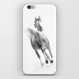 Arabian Dust iPhone Skin