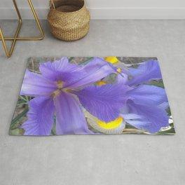 Purple Lily Rug
