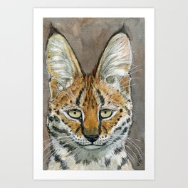 SERVAL BIG CATS A071 Art Print
