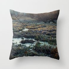 Is This What We've Seen All Along? Throw Pillow