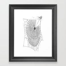 A Large Illustration Of A Spider's Web  Framed Art Print