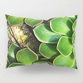 3 Succulents Pillow Sham