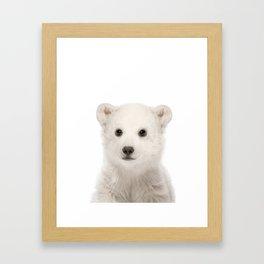 Polar Bear Cub Framed Art Print