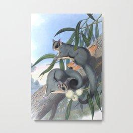 Sugar Glider Metal Print