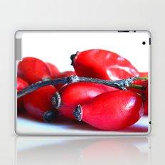Rose Hip Berries Laptop & iPad Skin