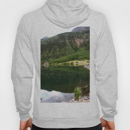 Row of Aspens on Crystal Lake Hoody