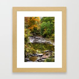 Fall Creek Landscape Framed Art Print