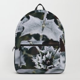 Leaves covered in frost Backpack