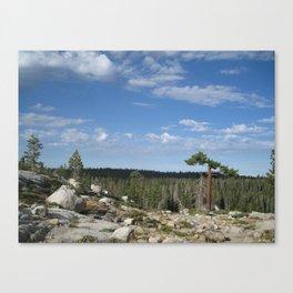 Granite Heaven Canvas Print