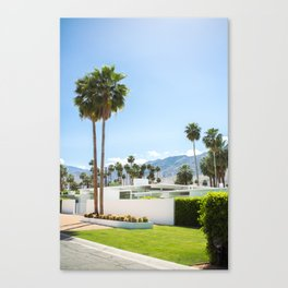 put the palm in palm springs Canvas Print
