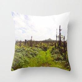 Cerro Dragon Throw Pillow