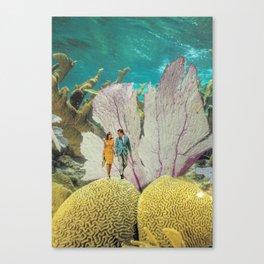 under water Canvas Print