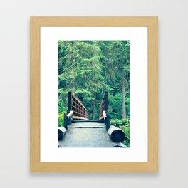 Marymere Falls Bridge 1 Framed Art Print