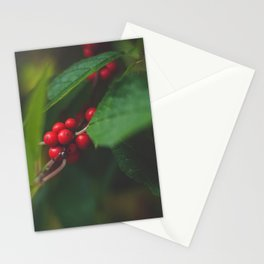 Red Berries Stationery Cards