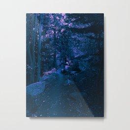 0410 Metal Print