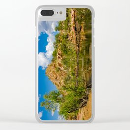 Bell Gorge Clear iPhone Case