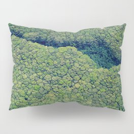 Kauai Above The Trees Pillow Sham