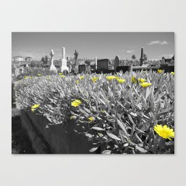 Flowers and Gravestones Canvas Print