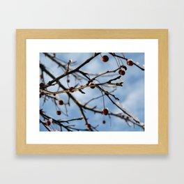 chilly Framed Art Print