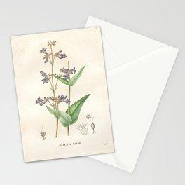 Flower galane lisse (Fr) Stationery Cards