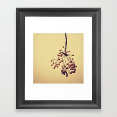 Autumn life (IV) Framed Art Print