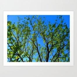 Clear Blue Sky Art Print