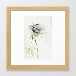 rose3 Framed Art Print